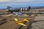 Spitfire MkIX and Hardvard Air-to-Air Warren