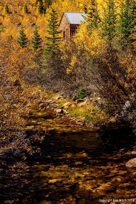 Cripple Creek Fall Color