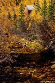 Cripple Creek Fall Color