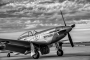 P51Must0002_bw